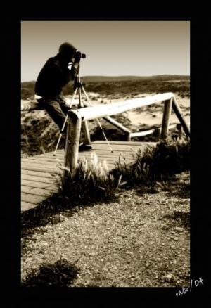 /shooting da sun