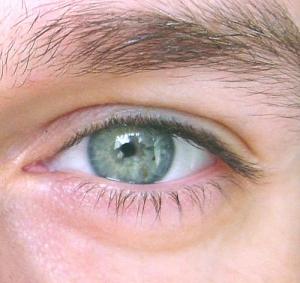 /O meu olhar
