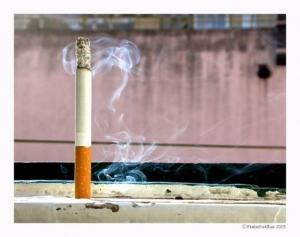 /Smoking Wind