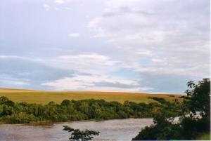 /Rio Tibagi no fim de tarde