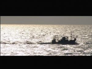 /Apenas um barco...
