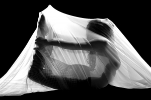 /Cocoon#2