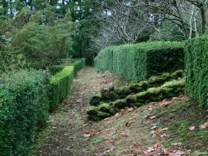 Paisagem Natural/A Natureza