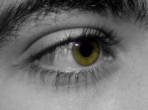 """Retratos/""""A vida com outros olhos"""""""