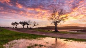 Paisagem Natural/E o céu pintou-se