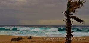 Gentes e Locais/A minha paixão é o mar...