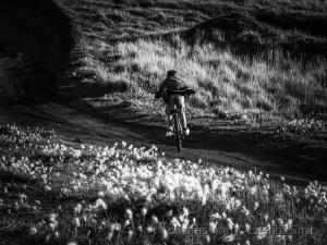 Gentes e Locais/downhill