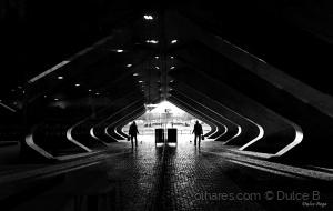 Arquitetura/o duplo