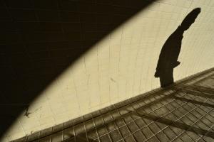 Fotografia de Rua/Clinging to life!