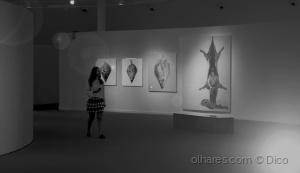 Paisagem Urbana/O Museu