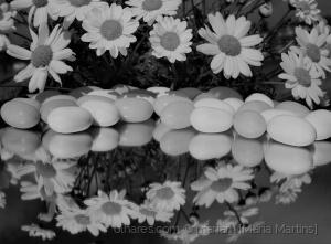 Outros/Páscoa e Primavera