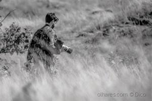 Gentes e Locais/Motif hunter