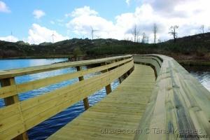 Paisagem Natural/Ponte