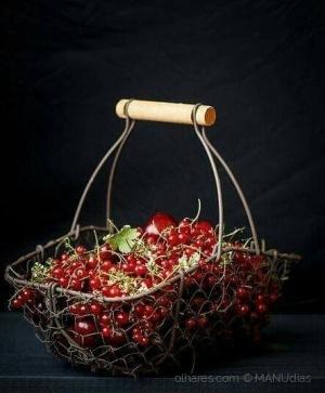 Gastronomia/*Prunus Cerasus*