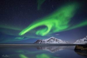 Paisagem Natural/Green Lights