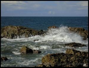 """Paisagem Natural/"""" Sabor do Atlântico """""""