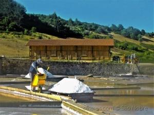 Gentes e Locais/Salinas de Rio Maior