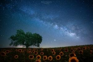 Paisagem Natural/Noite no Alentejo