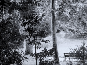 Paisagem Urbana/Manhã