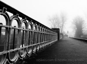 Fotografia de Rua/The Way