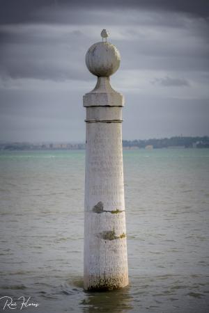 Arquitetura/A coluna