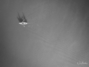 Paisagem Natural/O pescador solitário