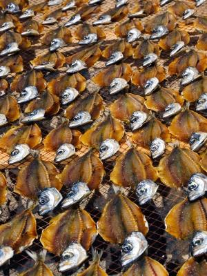 Outros/Seca do peixe - Nazaré, Portugal