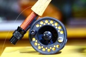 Desporto e Ação/Pescando Cores