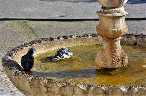 Gentes e Locais/Hora do banho