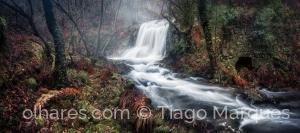 Paisagem Natural/Winter Waterfall
