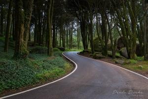 Paisagem Natural/Estrada da Peninha