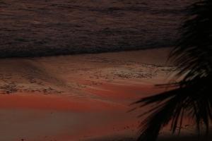 Paisagem Natural/Red