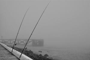 /Pesca