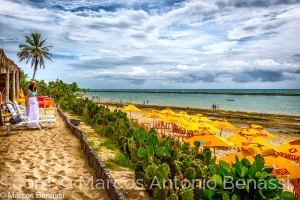 Gentes e Locais/Praia de Maceió, Alagoas, Brasil