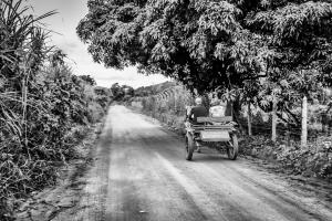 Fotografia de Rua/Caminho da roça