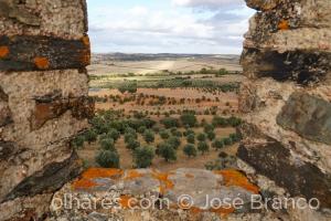 """Paisagem Natural/""""Do Castelo de Terena."""""""