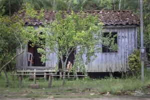Fotojornalismo/Quarentena na Amazônia