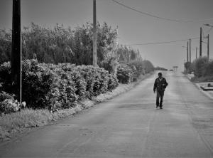 """Outros/"""" No caminho da casa de meu Pai """" (desc.)"""