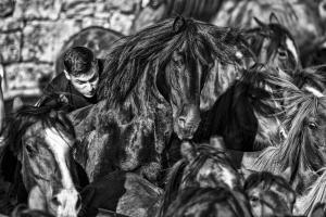 Fotojornalismo/Rapa das Bestas