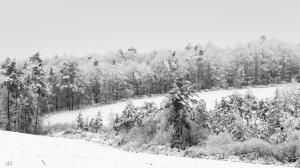 /la campagne sous la neige
