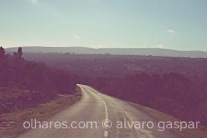 Paisagem Natural/Serra de Aire ao fundo.