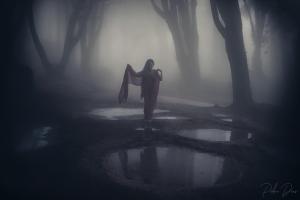/The Fog....