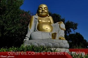 /Buda