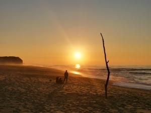 Paisagem Natural/A minha praia