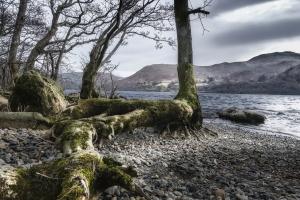Paisagem Natural/Ullswater - Tha Lake District, UK