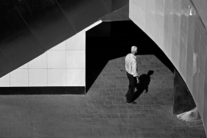 /Architecture and man
