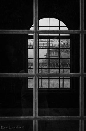 /windows