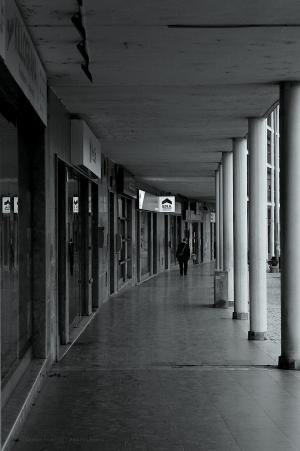 Fotografia de Rua/Passeio Solitário