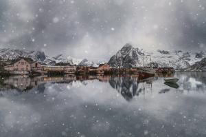 Paisagem Natural/Dreamy Winter
