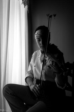 Retratos/cook the violin (II)